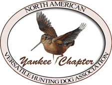 Yankee Chapter of NAVHDA